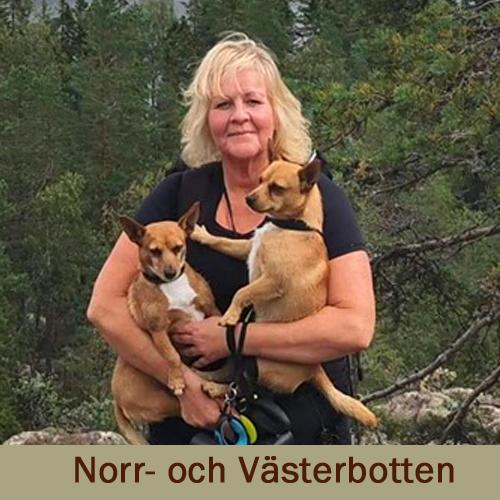Anita Klockare, Luleå